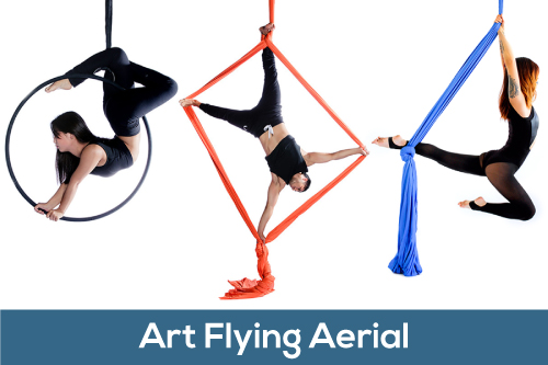 Art Flying Aerial