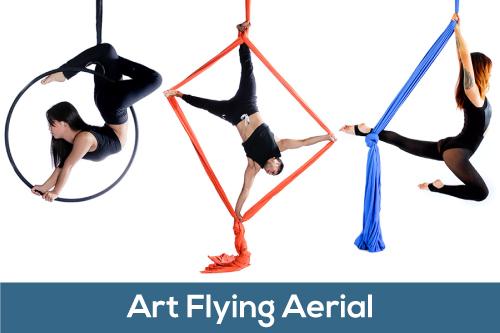 Art Flying Aerial