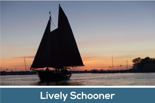 Lively Schooner INC.